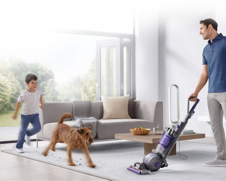 Best BAGLESS Upright Vacuums for Pet Hair