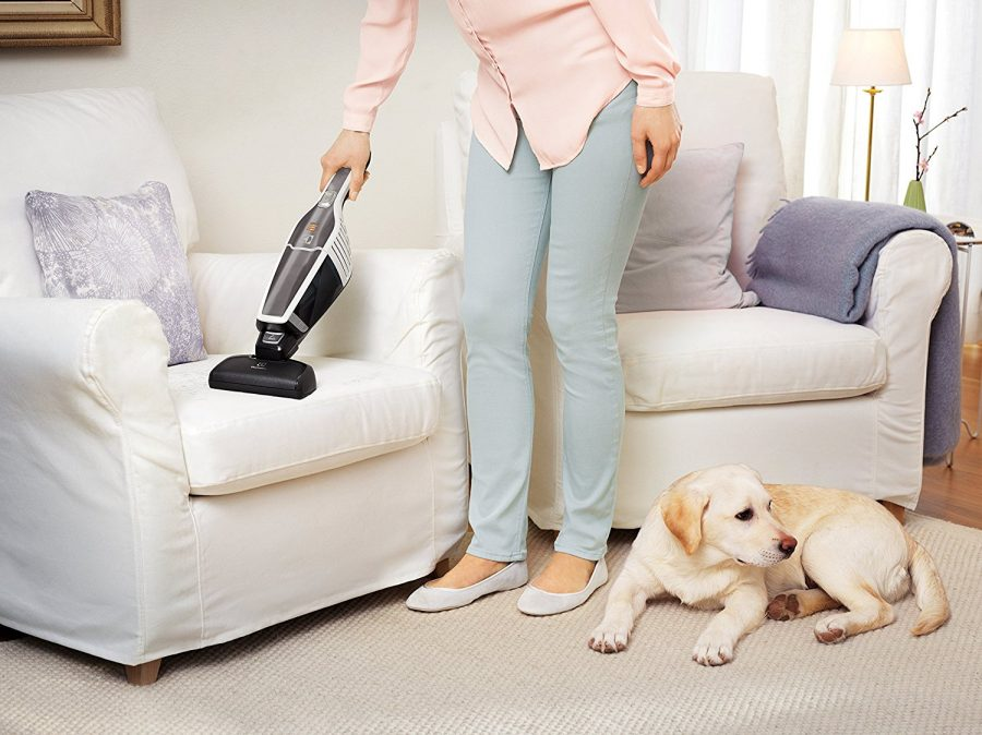 Best Vacuum To Remove Pet Hair From Furniture