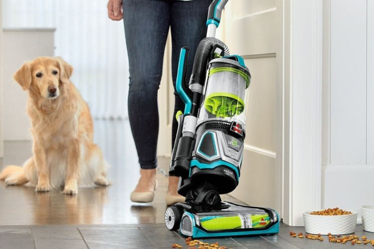 Best Vacuum For Pet Hair Awesome 2019 Recommendations