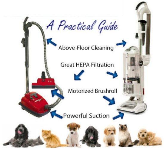 illustration of the features that make a vacuum cleaner best for cleaning pet hair