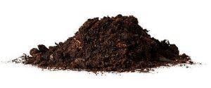 dirt is the enemy of hardwood floors